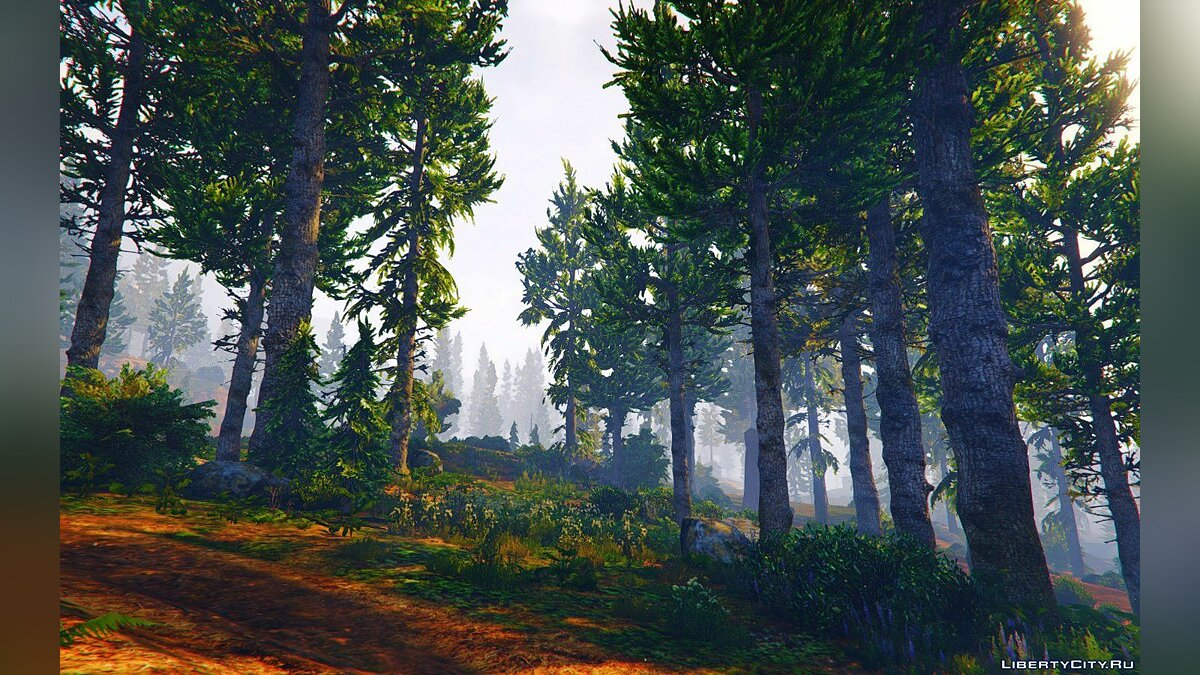 ENB мод Natural Graphic GTA V 20.4.8 для GTA 5
