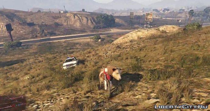 Корова на байке в GTA 5