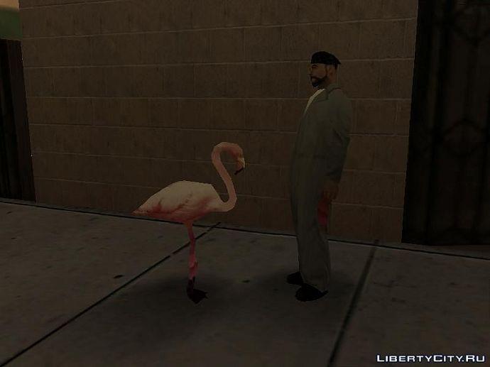 Разговор с птицей