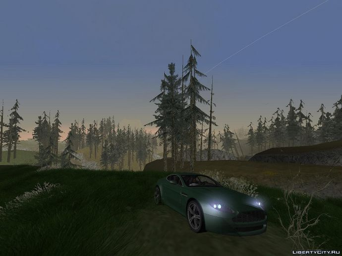 вечер в лесу