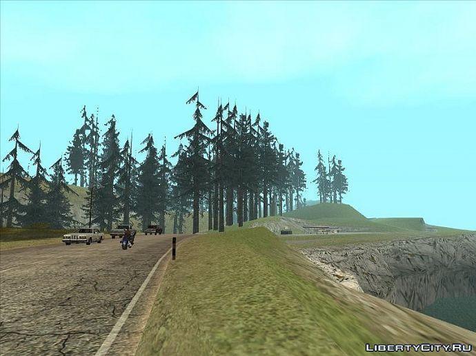 Лес продолжение