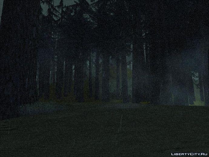 Ночь в лесу..