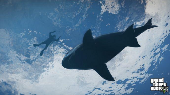 Акула и снорклинг в GTA 5