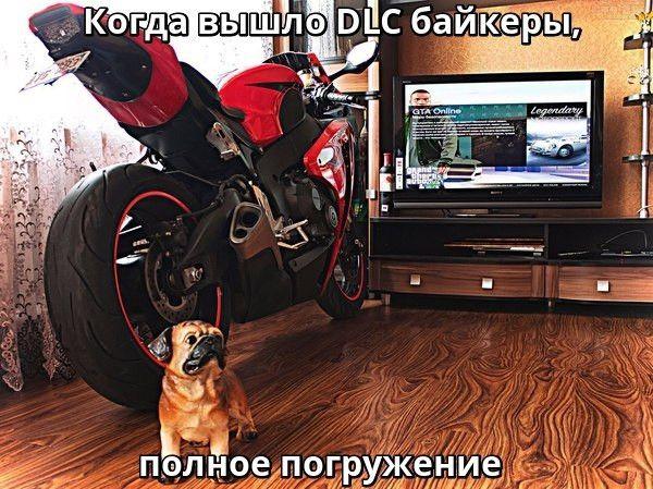 Когда вышло DLC