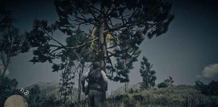 Где найти всех ловцов снов в Red Dead Redemption 2 — карта и описание