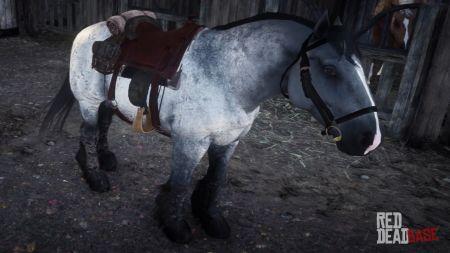 Темно-серая Арденская (Боевая лошадь) в RDR 2 - где найти, цена и характеристики