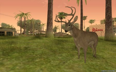 Моддер добавил анимированных животных в GTA San Andreas